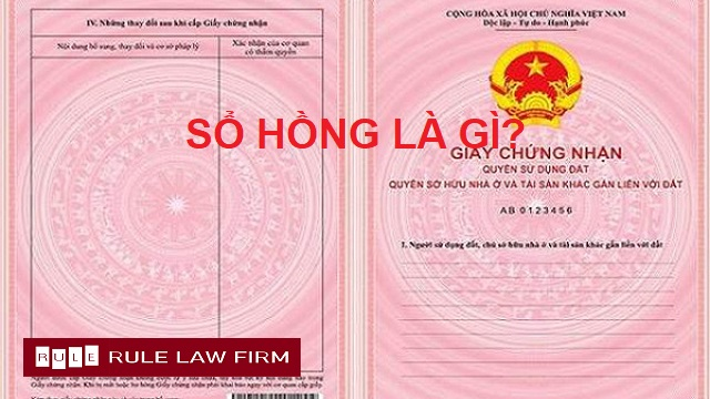 So hong la gi